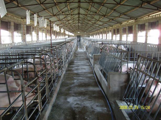 养殖床在发酵过程中维护?的工作服装设计图片